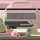 Интернет-магазин цвтов «Мальва»